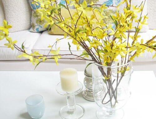 Spring Home Decor Ideas